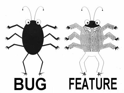 Difference Between a Bug and Feature