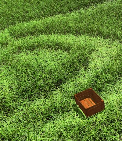 GeForce GTX 480 Direct3D 11 Tessellation - grass rendering