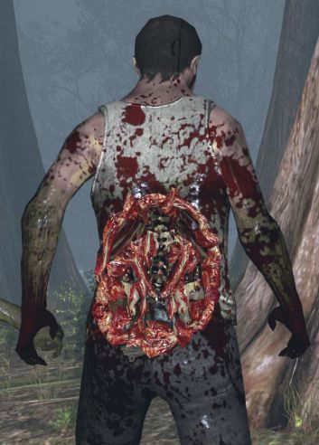 Left 4 Dead 2 - Lower back wounds