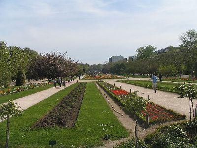 Paris panam jardin des plantes for Jardin des plantes chambery