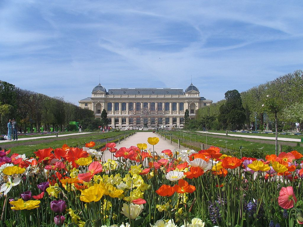 Jardin des plantes paris panam for Paris jardin plantes
